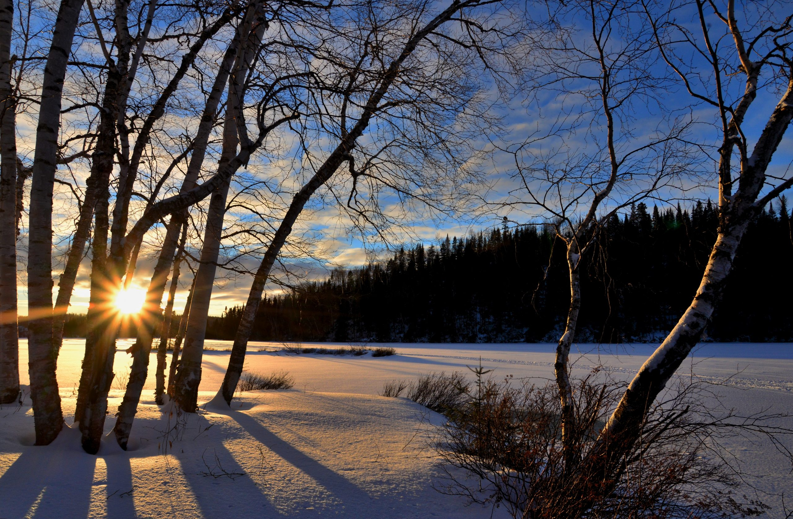 The sun rising over a snowy field surrounded by trees