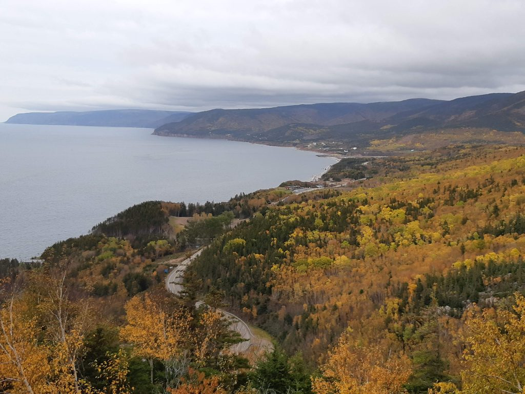 A winding highway cuts though a forest of trees in autumn hues of orange, green, and yellow, The highway is coastal, and you can see the ocean in the left of the photo.