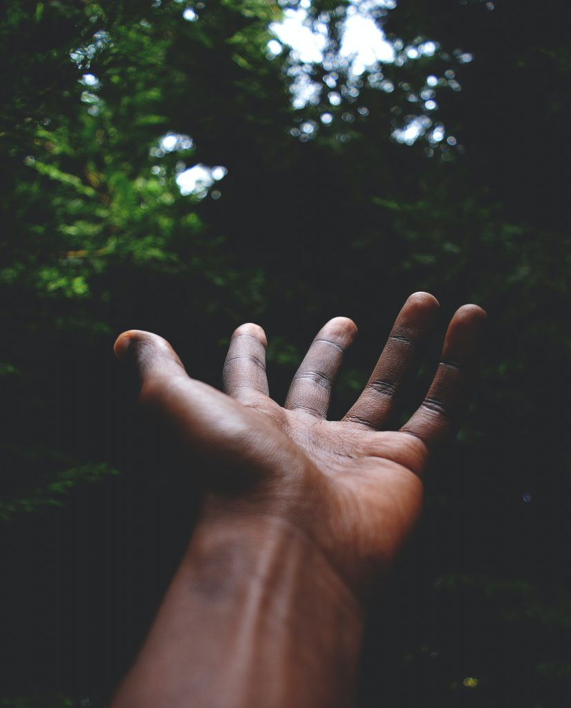 A hand, palm facing upwards, reaching into the unknown. The background is a dark forest.